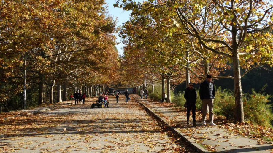 Зоны отдыха и парки развлечений подвергнутся проверкам со стороны Государственной налоговой службы