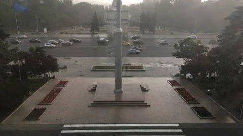 (Фото) Первые последствия дождя. Возле здания Молдавского Правительства упало дерево