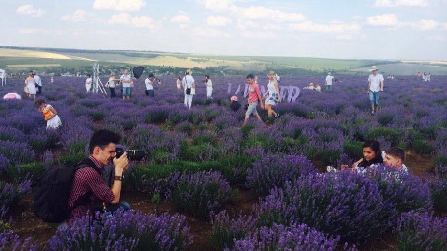 (фото) Сезон лавандовых фотосессий можно считать открытым! Где в Молдове цветет лаванда и как туда добраться?