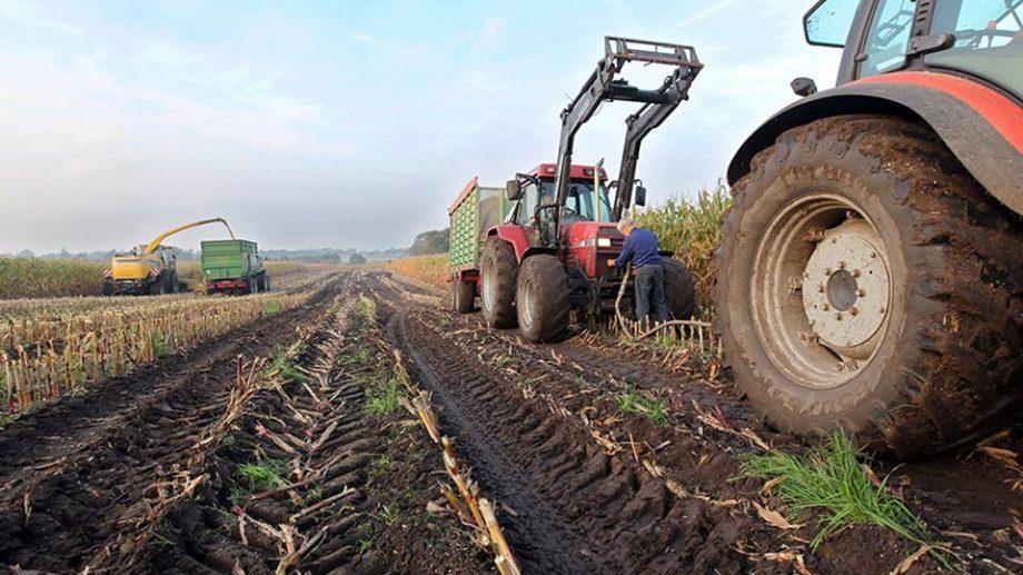Курсы для фермеров Гагаузской автономии пройдут в Комратском госуниверситете