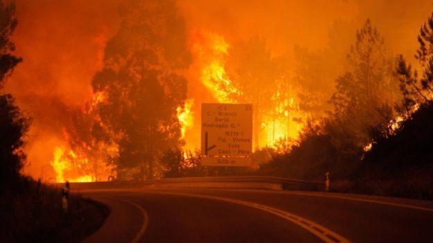 Министерство иностранных дел выпустило предупреждение о поездках в Португалию