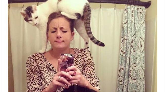 (фото) Селфи с кошками. Когда что-то пошло не так