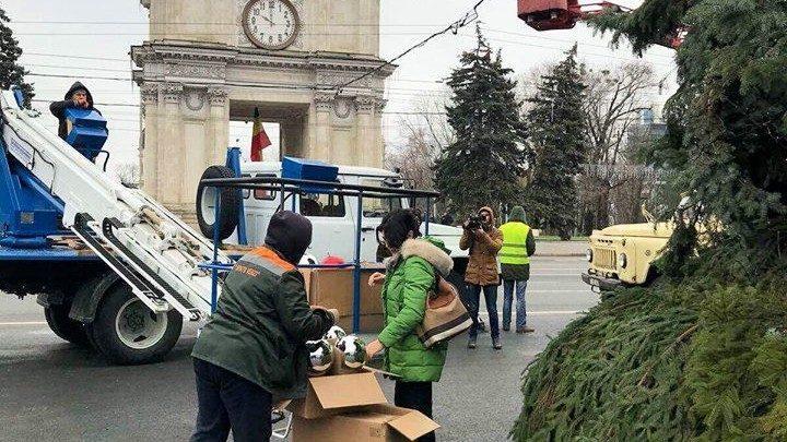 (фото) Как проходят работы по украшению Рождественской елки в центре Кишинева