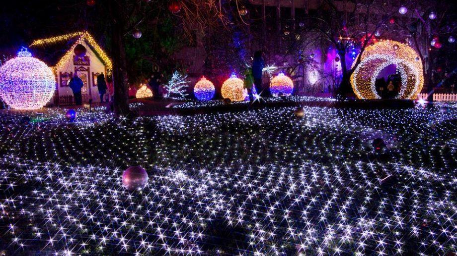 Ждите колядующих на Рождество. Программа Рождественской ярмарки в Кишиневе