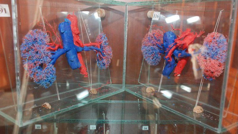 Lifehack.md: Гид по малоизвестным 16 музеям Кишинева