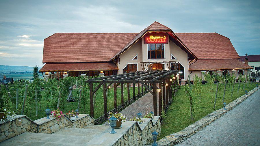 Хорошее настроение и самое лучшее молдавское вино ждут вас на Фестивале вина в Château Vartely. Где купить билет