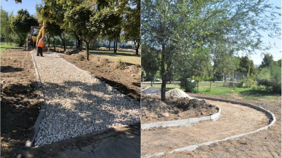 (фото) Новая аллея обустраивается в столичном секторе Рышкань