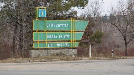 (видео) Компания Kayakingtours запускает новые туры по Молдове. Как, путешествуя на байдарке, посмотреть всю страну