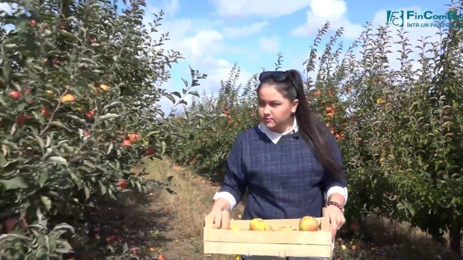 """(видео) """"С помощью FinComBank моя мечта стала реальностью."""" Узнай историю успеха фруктовых садов"""