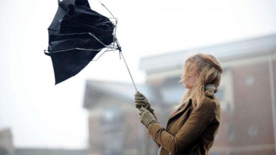 До пятницы в стране действует желтый код опасности в связи с порывистым ветром