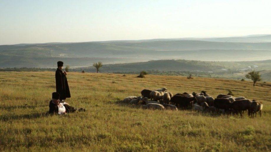 На Ethos Film Fest 2019 молдавский режиссер получил главный призм. За год его фильм собрал 6 премий в разных странах мира