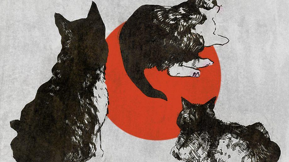 «У судьбы, похоже, есть чувство юмора: я умру раньше Капусты, так же, как и мама». Отрывок из книги Гэнки Кавамура «Если все кошки в мире исчезнут»