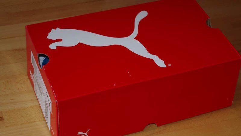 Puma проиграла судебный процесс против молдавской компании, которую обвинила в продаже обуви под их маркой в Сороках