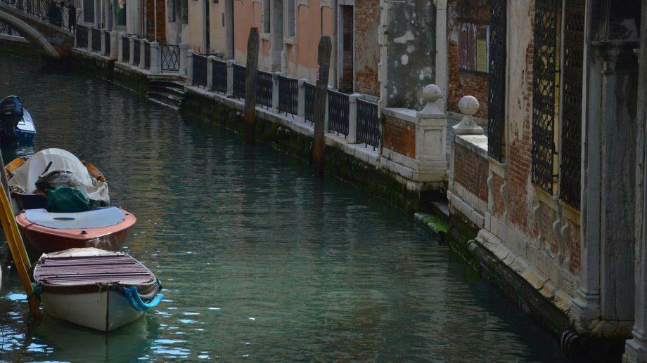 (видео) Из-за отсутствия туристов и движения катеров вода в каналах Венеции стала чище