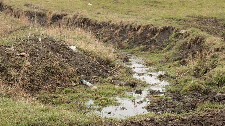 (фото) Экология в Приднестровье – ещё жива, но надолго ли