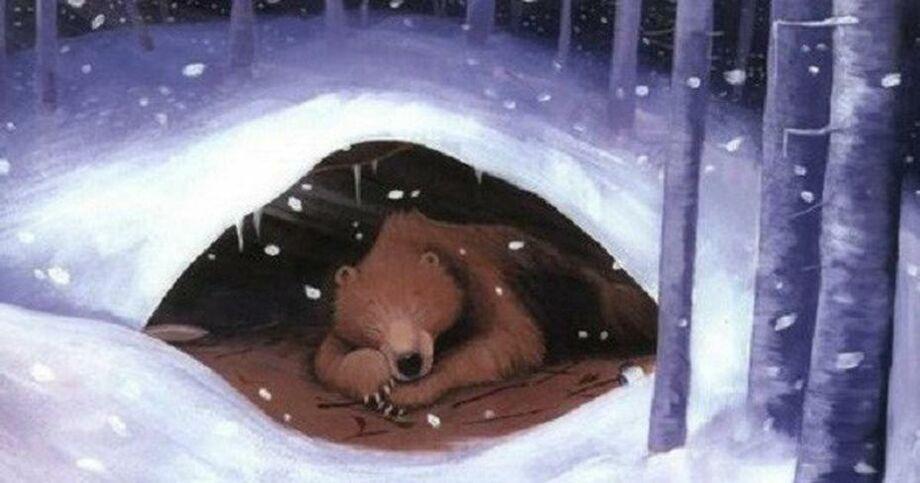 пройдут картинка медведь зимой на прозрачном фоне факультета художественной