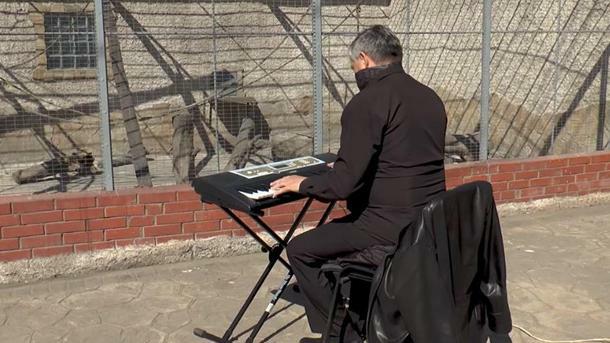 (видео) Директор Одесского зоопарка провел для животных концерт во время карантина