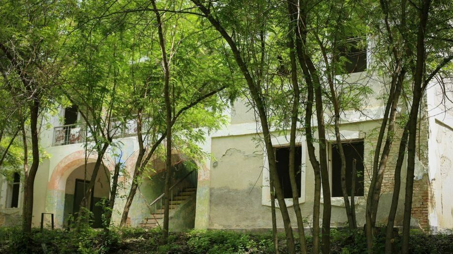 (фото) Как выглядит особняк семьи Руссо в Каларашском районе, где гостил Пушкин
